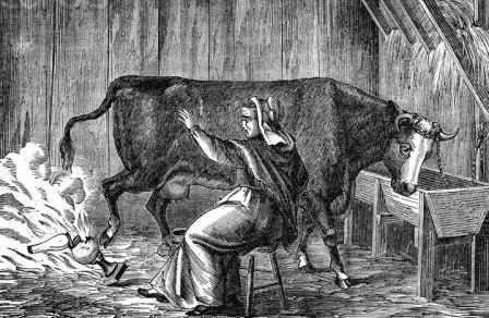 Great Chicago Fire: Mrs O'Leary and the cow